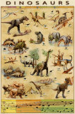Dinosaurier nach Arten Poster