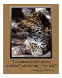 Patience Photographic Print by Scott Kuehn