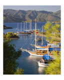 Gulets Boats on the Turquoise Coast of Turkey Photographic Print by David Smith