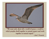 World of Peace Photographic Print by Scott Kuehn