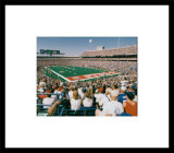 Ralph Wilson Stadium Prints