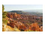 Bryce Morning Photographic Print by David Cramer