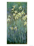 The Yellow Irises Giclée-trykk av Claude Monet