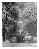 Gapstow Bridge View to Plaza Hotel in Snowstorm - Central Park, New York Photographic Print by DW labs