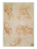 Seven Studies of Grotesque Faces Giclee Print by  Leonardo da Vinci