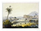 Sugar Plantation, Antilles Giclee Print by Paolo Fumagalli