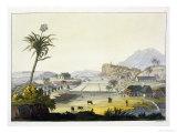 Sugar Plantation, Antilles Giclee Print by Paolo Fumagalli
