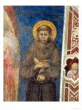St. Francis Giclée-tryk af Cimabue