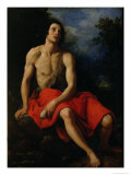 St. John the Baptist in the Desert Premium Giclee Print by Cristofano Allori