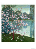 Magnolia Giclee Print by Wilhelm List