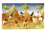 Pepper Harvest in Coilum, Southern India Giclee Print by Boucicaut Master 