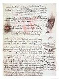 Manuscript Page from Codici Rari III 35.2 Giclee Print by  Leonardo da Vinci