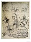 Leonardo da Vinci - The Heart and the Circulation, Facsimile of the Windsor Book - Giclee Baskı