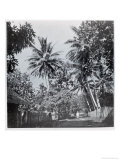 "A Street in Papeete, from ""Tahiti,"" Published in London, 1882 Giclee Print by Colonel Stuart-wortley"