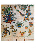 "Aztec Codex Borbonicus, ""Tonalamatl,"" Detail Depicting the Goddess Mayahuel Giclee Print by  Pre-Columbian"