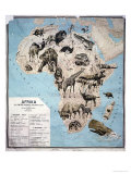 Map of Animals in Africa Sf Giclee Print by Janos Balint