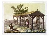 "Slaves Preparing Tobacco, Virginia, America, circa 1790, from ""Le Costume Ancien Et Moderne"" Giclee Print by G. Bramati"