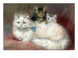 A Persian Cat and Her Kittens Giclee Print by Maud D. Heaps