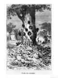 "The Tree of Cannibals, Illustration from ""Five Weeks in a Balloon"" by Jules Verne Paris, Hetzel Giclee Print by Édouard Riou"