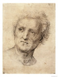 Head of a Man, Possibly Bramante Reproduction proc&#233;d&#233; gicl&#233;e par Raphael 