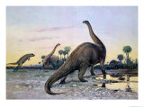 Prehistoric Animals: a Laelaps Attacking a Brontosaurus Giclee Print by Wilhelm Kuhnert