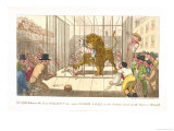 The Fight Between the Lion Wallace and the Dogs Tinker and Ball in the Factory Yard Giclee Print by Theodore Lane
