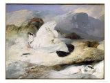 Ptarmigan Impression giclée par Edwin Henry Landseer