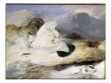 Ptarmigan Giclee Print by Edwin Henry Landseer