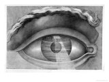 Eye Enclosing the Theatre at Besancon, France, Giclee Print