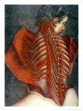 "The Flayed Angel,"" from ""Myologie Complette En Couleur Et Grandeur Naturelle,"" 1746 Giclee Print by Jacques Fabien Gautier d'Agoty"