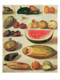 Still Life with Fruit and Toad Giclee Print by Hermenegildo Bustos