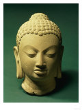 Buff Sandstone Head of the Buddha, Sarnath, 5th Century Giclee Print