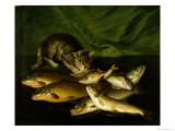 A Cat with Trout, Perch and Carp on a Ledge Giclee Print by Stephen Elmer