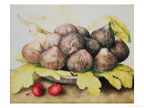 Figs Giclee Print by Giovanna Garzoni