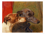 "The Greyhounds ""Charley"" and ""Jimmy"" in an Interior Giclee Print by John Frederick Herring I"