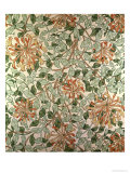 Honeysuckle II&#39; Design Giclee Print by William Morris