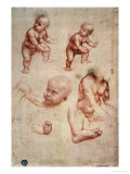Study for a Portrait of a Child Giclee Print by  Leonardo da Vinci