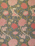 Cray, 1884 Reproduction proc&#233;d&#233; gicl&#233;e par William Morris