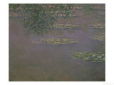 Waterlilies, 1903 Giclee Print by Claude Monet