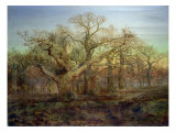 The Edge of Sherwood Forest, 1878 Premium Giclee Print by Andrew Maccallum