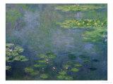 Wasserlilien Giclée-Premiumdruck von Claude Monet