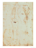 Two Studies of a Hanging Skeleton Giclee Print by  Leonardo da Vinci