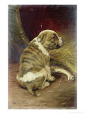Give a Dog a Bone, 1888 Premium Giclee Print by William Henry Hamilton Trood