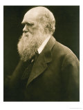 Charles Darwin Lámina giclée por Julia Margaret Cameron