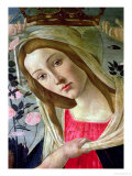 Madonna and Child Crowned by Angels, Detail of the Madonna Premium Giclee Print by Sandro Botticelli