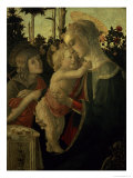 Madonna and Child with St. John the Baptist Giclee Print by Sandro Botticelli