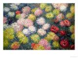 Claude Monet - Chrysanthemums, 1897 - Giclee Baskı