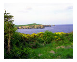 Irish Coastline Photographic Print by Cynthia Douthard