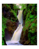 Waterfall Photographic Print by Cynthia Douthard