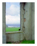 The Window Photographic Print by Cynthia Douthard